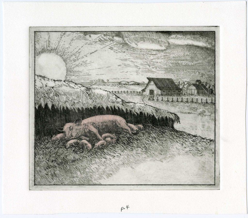 """""""Oink"""" interior original art etching"""